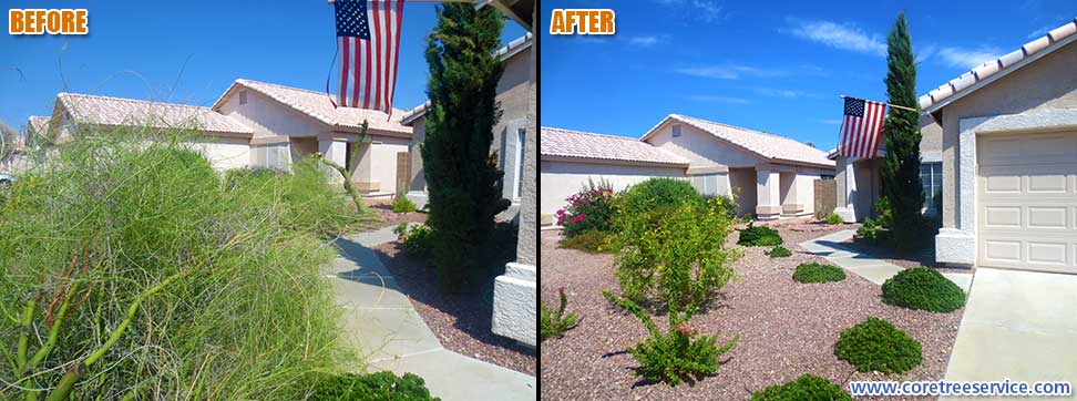 Before & After, Palo Verde tree breaks during storm in Glendale, 85085
